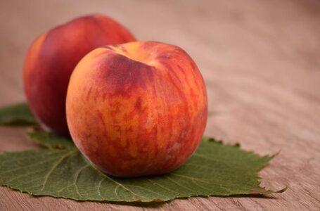Абрикоси, персики, виноград – що українські садівники продають найдорожче у липні