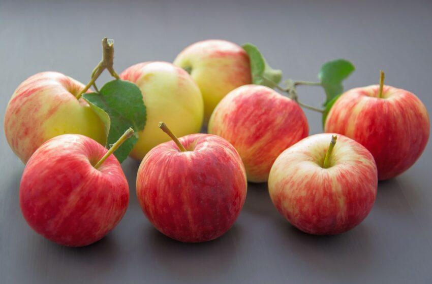 Ранчо з яблуневим садом створив на Полтавщині фермер