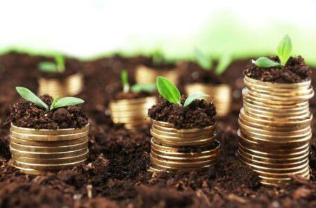 Поради садівникам: хто має право отримати пільгу на сплату земельного податку?
