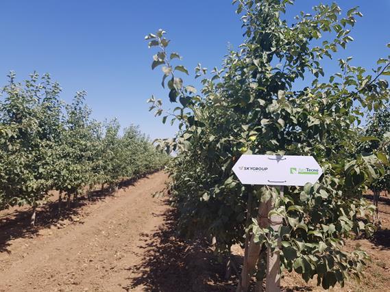 Майбутнє за технологіями: на Херсонщині пройшов VI Національний День Саду