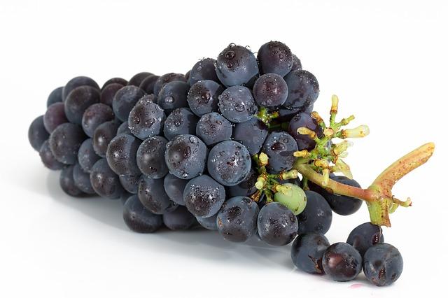 Фермер на Вінниччині вирощує більше 300 сортів винограду
