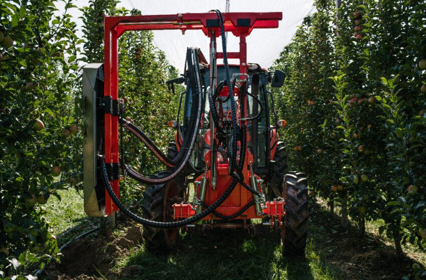 Нове у механізації садівництва. Машина для видалення листя в інтенсивних садах
