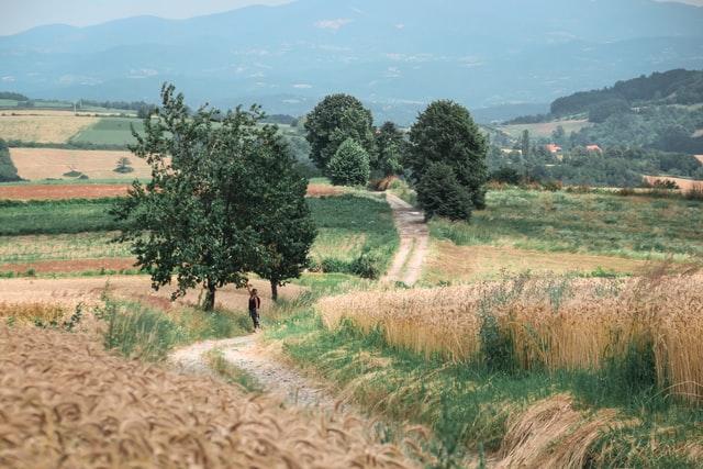 Агротуристичний бум у Чорногорії