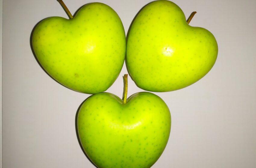 Яблука у формі серця вирощують на Черкащині